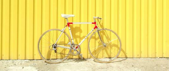 rower(1)